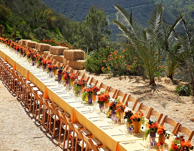 Long dinner table set in California hills.