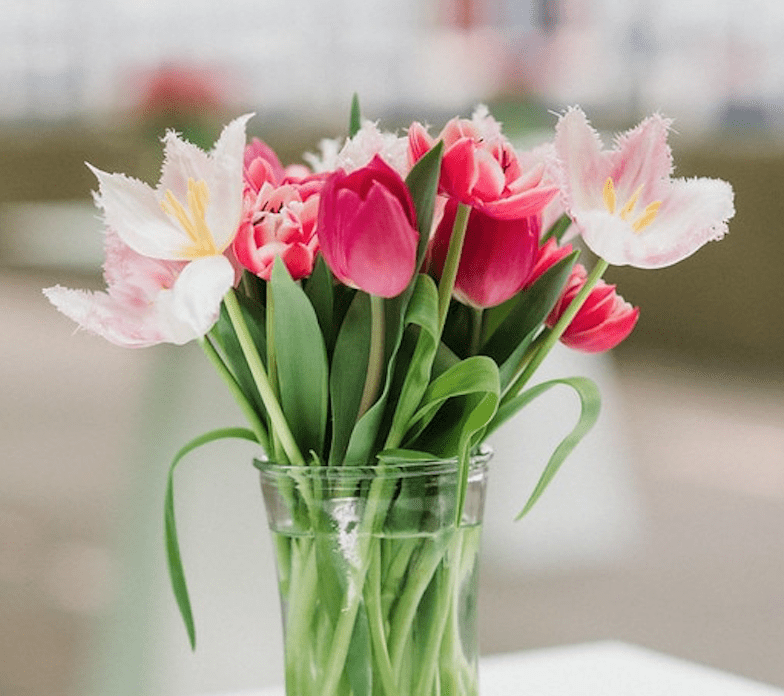 Vase of tulips on a table.