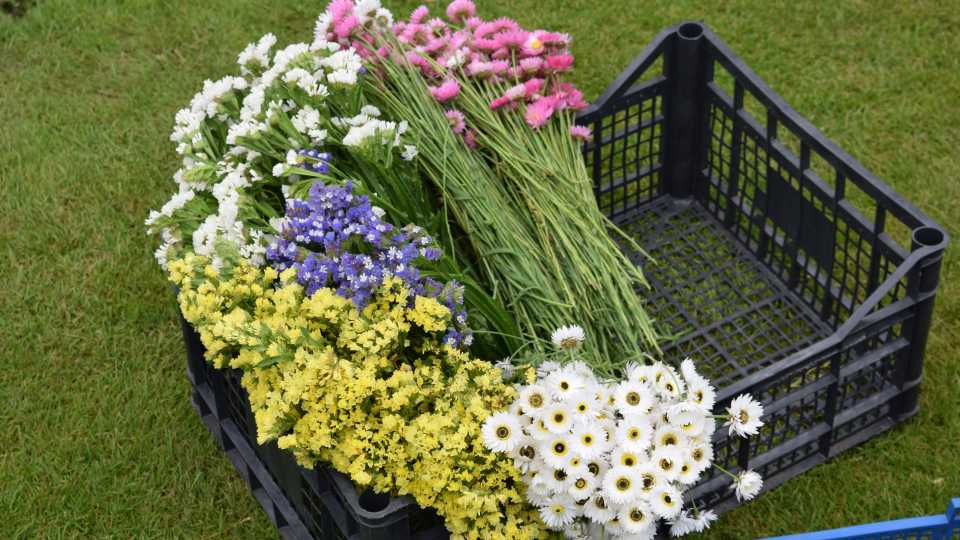 Bunches of flowers laying on a crate in the grass.