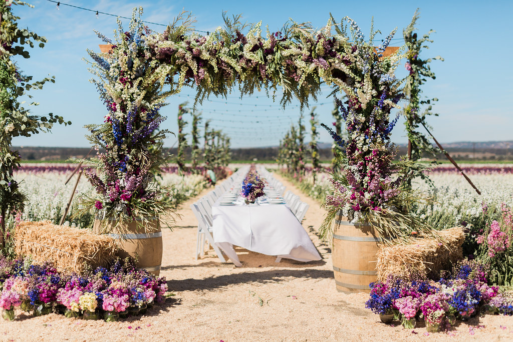 A long dinner table set up in a stock field with the entrance being a large arch decorated with stock flowers and greens.