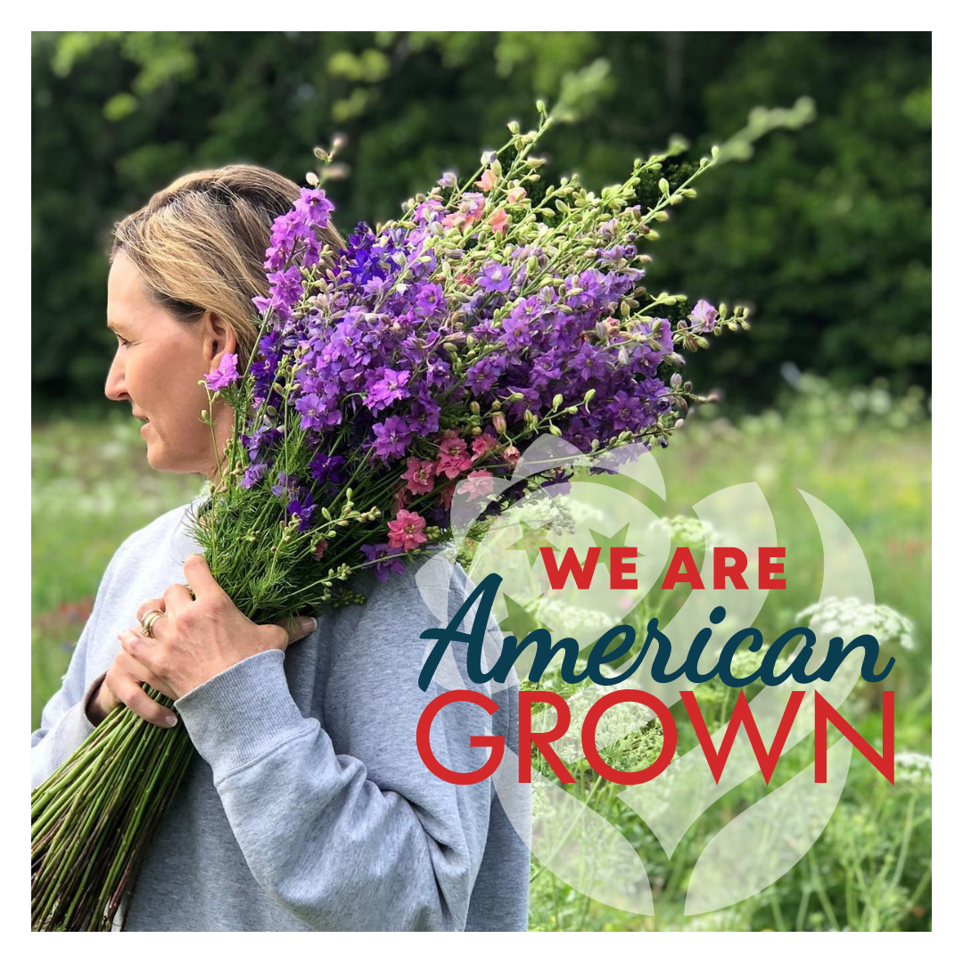 """Female farmer holding a bunch of delphinium and looking to the side while standing in a field of flowers and grasses. The American Grown logo with text """"We Are American Grown"""" overlaid."""
