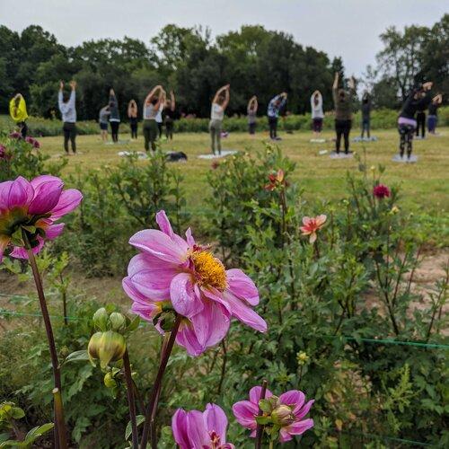 Yoga on Flower Farm