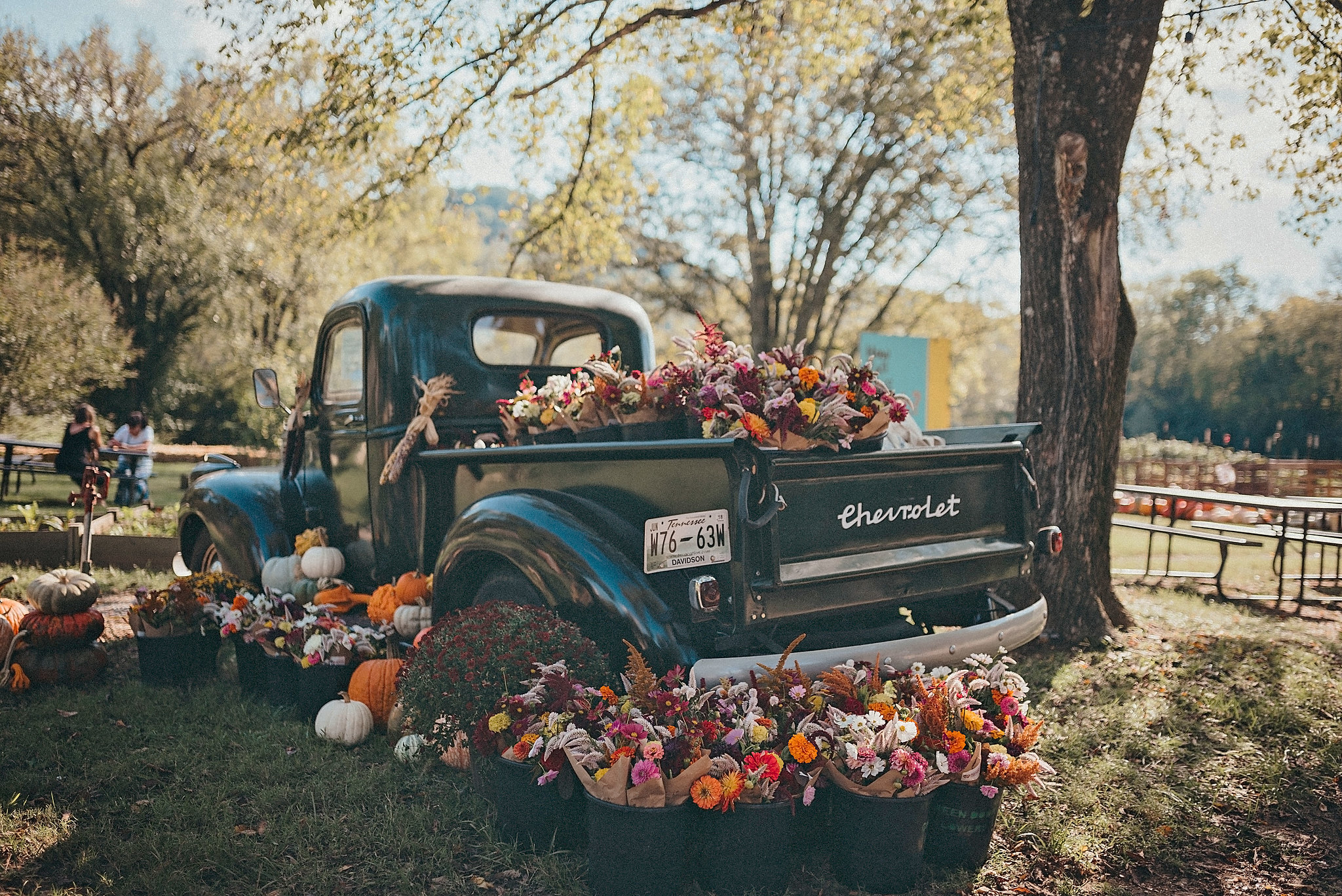 Picture of old black truck full of fall flowers and pumpkins.